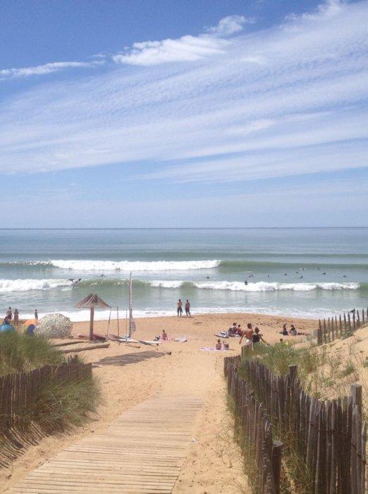 Koa surf shool